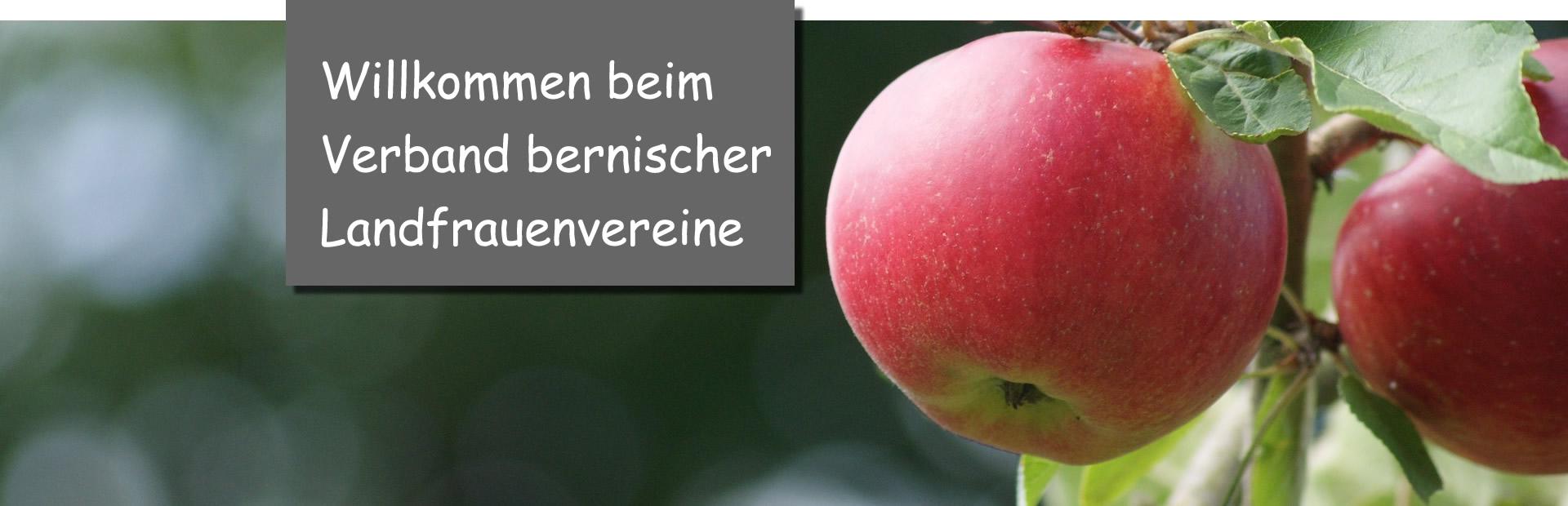 Apfel_willkomm