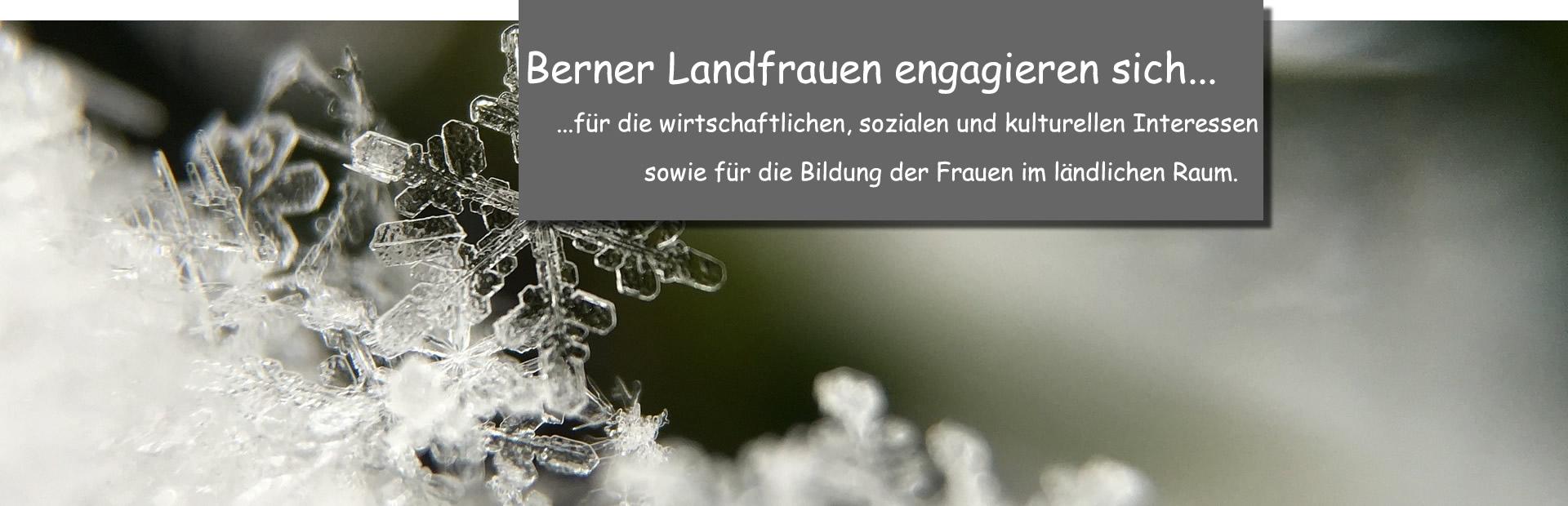 Schneeflocke_engag